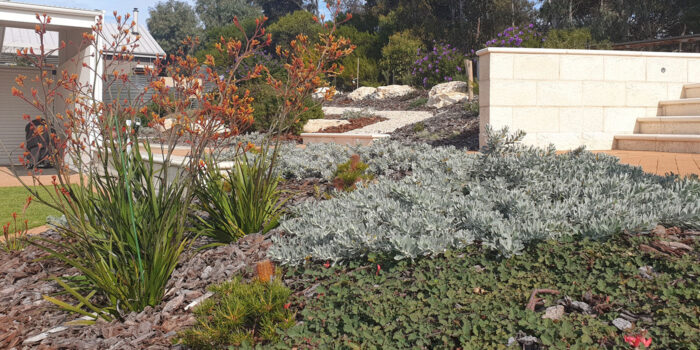 Landscaping Native Gardens Adelaide   Hand Made Gardens