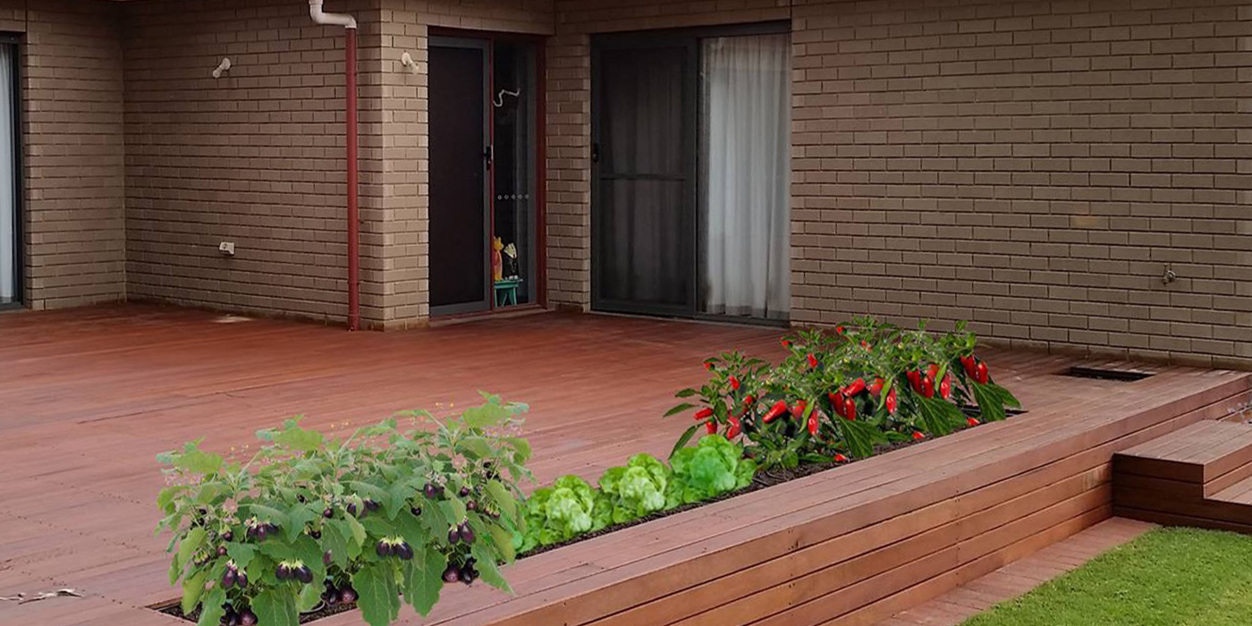 Raised Hardwood Timber Decking